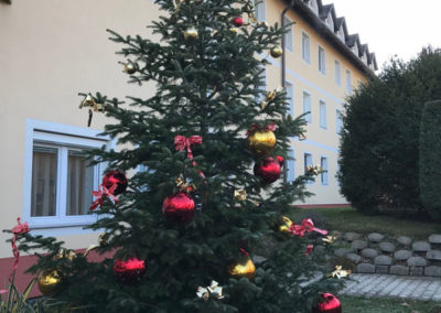 Christbaum_Pflegeheim Beer
